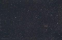 NGC 2359 Thor's helmet just visible in this image of the SE sky. (Themagster3) Tags: night nebula astrophotography astronomy nightsky thorshelmet astrometrydotnet:status=solved ngc2359 astrometrydotnet:id=nova1418742