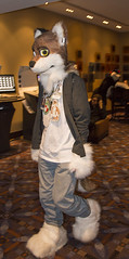 DSC_2964 (Acrufox) Tags: chicago illinois furry midwest december ohare rosemont convention hyatt regency 2014 fursuit furfest fursuiting acrufox mff2014