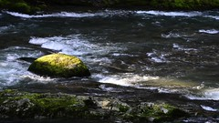South Santiam.mp4 (Radiant Night) Tags: longexposure trees sunlight green water beauty night oregon river photography video moss miller burning carl cascades radiant southsantiam carlmiller