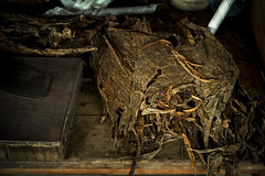 _Q9A7404 (gaujourfrancoise) Tags: cuba carribean tabac cigars tobacco cigares carabes tobaccoleaves feuillesdetabac gaujour