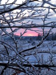 IMG_9238_2 (Bike and hiker) Tags: winter mist hiver sneeuw neige venn hoge hautes fagnes venen hohes botrange neur bayehon low