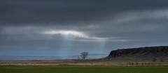Llacuna de Gallocanta (Aicbon) Tags: light naturaleza lake verde luz sol nature azul canon lago zaragoza cielo nubes 7d tormenta laguna teruel sal nuvols bello gallocanta tornos jiloca lascuerlas