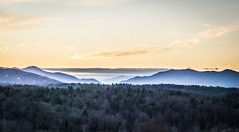 The land of the free II (Wade Brooks) Tags: december northcarolina biltmore 2015 decemberlandscapephotography