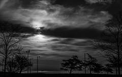 _DSC0192.jpg (art_photo) Tags: chicago lakeshoredrive
