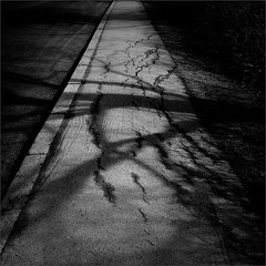 April (Olli Kekäläinen) Tags: nikon d800 photoshop ok6 2014 work4048 square ollik 2016 20160307 malmi helsinki suomi finland sideway street scenery dark blackandwhite