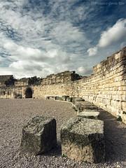 Parque Arqueolgico de Segbriga (V). Anfiteatro romano. / Segbriga Archeological Park (V). Roman anphitheatre. (Salices, Cuenca, Spain) (Recesvintus) Tags: espaa history archaeology spain historia cuenca arqueologa segbriga anfiteatroromano romananphitheatre recesvintus salices