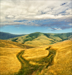 Endless world (Katarina 2353) Tags: summer mountain film nature landscape nikon serbia fields srbija zlatibor katarinastefanovic katarina2353
