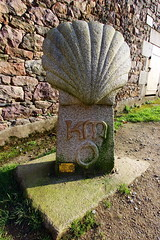 Paimpol Abbaye de Beauport (Thethe35400) Tags: sculpture stone pierre concha stein pedra conchiglia piedra coquille schale compostelle plerin plrinage