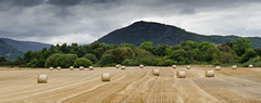 Stubble in Strath Conon (Joe Dunckley) Tags: uk mountain field landscape scotland highlands harvest crop hay bales inverness stubble haybales strathconon marybank