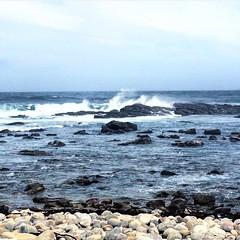 #Disfrutar del #domingo! #Enjoy Your #Sunday! #capeofgoodhope #southafrica #sudafrica #sea #endoftheworld #thistimeforafrica #loveafrica #relax #calm #blue #africa #natural #landscape #instatravel #instafrica #traveler #travelling #travelover (Cevex Madrid) Tags: africa blue sea travelling relax landscape southafrica natural sunday calm enjoy domingo capeofgoodhope traveler endoftheworld sudafrica disfrutar loveafrica thistimeforafrica instatravel travelover instafrica