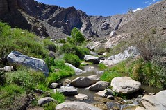 River at Tahquitz Canyon (Blue Rave) Tags: california park mountains nature hiking palmsprings hike trail tahquitzcanyon 2016 tahquitzcanyontrail