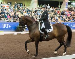 160409_2016_SydneyCDI_GPFS_4702.jpg (FranzVenhaus) Tags: horses test sydney australia nsw judge newsouthwales aus equestrian riders dressage siec