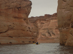 hidden-canyon-kayak-lake-powell-page-arizona-southwest-DSCN4954 (lakepowellhiddencanyonkayak) Tags: arizona southwest utah kayak kayaking page coloradoriver paddling nationalmonument lakepowell slotcanyon glencanyon watersport glencanyonnationalrecreationarea recreationarea guidedtour hiddencanyon utahhiking arizonahiking kayakingtour halfdaytrip craiglittle lakepowellkayak lonerockcanyon kayakinglakepowell hiddencanyonkayak seakayakingtour seakayakinglakepowell arizonakayaking utahkayaking