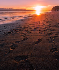 Foot Prints in the Sand @ Sunset.jpg (Eye of G Photography) Tags: sunset usa beach grass footprints places whidbeyisland northamerica pugetsound washingtonstate sunsetsunrise skyclouds beachgrass