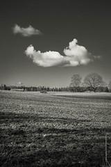 lone meeting (imagomagia) Tags: blackandwhite cloud art clouds landscape naturallight bnw fineartphotography blackandwhitephotography artphoto artphotography landscapephotography conceptualphotography artofvisuals