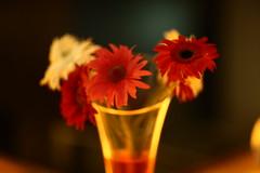 NOBOBORSHER SHUBHECHHA !!!! (N A Y E E M) Tags: flowers light hotel raw availablelight newyear lobby vase untouched bangladesh lastnight unedited bengali chittagong sooc radissonblu portbar