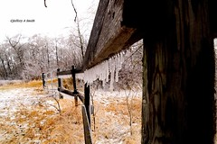 DSC_1041_125 (Jeffery A. Smith) Tags: ice fence nikon icestorm northdakota icicle freezingrain fenceline woodfence bottineau d3300