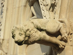 20150310 Rhne Lyon - Cathdrale Saint Jean - Gargouilles (1) (anhndee) Tags: france frankreich cathedral lyon rhne gargoyle cathdrale gargouille cathedrale rhonealpes gargouilles
