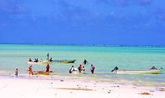 Paje Beach Life (Tomas Pfeifer) Tags: africa sea sun beach boats indianocean beachlife zanzibar paje