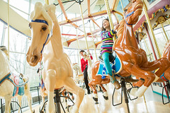 WRHS-6026 (FarFlungTravels) Tags: ohio horse history beach museum kids fun play ride cleveland carousel activity euclid merrygoround universitycircle euclidbeach