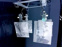another few sheets drying (mike thomas) Tags: bw white black film analog darkroom large 400 4x5 sheet format rodinal inverted edu development negatives 5x4 arista