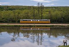 _DSC3213-Edit (Klosi Tams) Tags: street urban lake reflection nature water landscape fishing nikon hungary g budapest 85mm tram d750 18 villamos