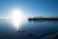bertrappange-1040951.jpg (rappange) Tags: water landscapes lakes thenetherlands friesland ijsselmeer frysln mirns