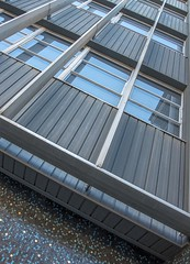 Lydiard House (phunnyfotos) Tags: blue windows building architecture facade ceramic gold nikon mosaic australia victoria lookingup d750 vic ballarat tiling lydiardhouse tilies phunnyfotos nikond750