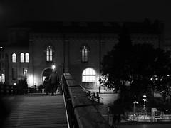 Venezia_132_1718 (Dubliner_900) Tags: venice bw monochrome streetphotography olympus ponte venezia bianconero veneto pontedellaccademia micro43 mzuikodigital17mm118 omdem5markii