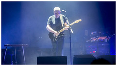 David Gilmour with Stratocaster (Otis335) Tags: musician concert royalalberthall guitar stage band pinkfloyd guitarist davidgilmour blackstratocaster