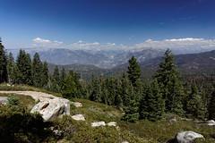 Punkt Widokowy Panoramic View | Panoramic View