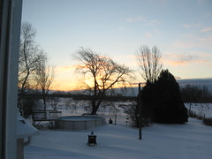 noella 17 janvier 2015 (Boriton42) Tags: noella