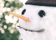 Bonhomme de neige: Portrait Histori (Edson_Matthews) Tags: portrait snow nose snowman carrot jonas winterstorm bonhommedeneige 2016