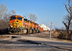 Eagle Street Crossing (NickNorman) Tags: railroad oklahoma train nikon railway bnsf lucien c449w