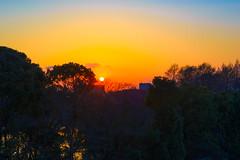Dusk - Lights in the evening (Mototaka Tsujima) Tags: winter japan tokyo evening nikon voigtlander sl 夕陽 日本 東京 冬 ll nokton arakawa 夕方 d610 荒川 5814 ニコン ノクトン