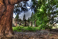 Tunbridge Wells Cemetery (aquanout) Tags: sky leaves graves serene