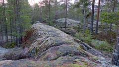 Cliffs near the northern end of Lake Suolikas (Ollila, Vihti, 20151212) (RainoL) Tags: winter cliff forest finland geotagged nationalpark december fin ollila uusimaa 2015 nyland vihti suolikas vichtis nuuksionationalpark 201512 20151212 geo:lat=6033539820 geo:lon=2456247507