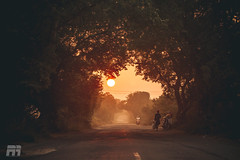 Nothing is ever lost ,It Just begins again !!!!! (Rahul Ravindaran) Tags: road sunset sky orange sun sunlight smile sunrise driving ngc captured bliss sunrays chennai moring