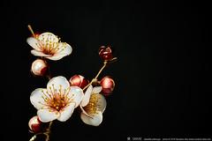 2016    Prunus mume 03 ( sakae) Tags: hair out pin time cnn ornaments kimono resin sakae  prunus      kanzashi     mume             chromavision interbee2015