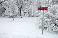 Valge ja punane (Jaan Keinaste) Tags: winter red estonia pentax eesti k3 talv harjumaa punane raevald jrialevik pentaxk3