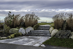 Beach invitation (Tony Tomlin) Tags: ocean sea canada gardens bc britishcolumbia steps shore crescentbeach grasses