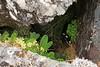 Safe Haven (RoystonVasey) Tags: mountain canon eos scotland zoom m 1855mm stm loch corbett arkaig sgurr bheinn fraoch strathan mhurlagain