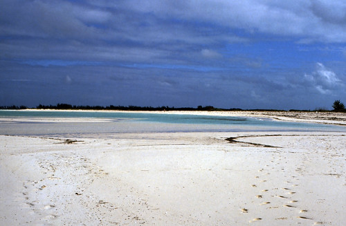 "Bahamas 1989 (419) Abaco: Green Turtle Cay • <a style=""font-size:0.8em;"" href=""http://www.flickr.com/photos/69570948@N04/24836335815/"" target=""_blank"">View on Flickr</a>"
