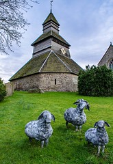Bell Tower and Sheep Sculptures (dgmann11) Tags: tower church grass metal sheep herefordshire pembridge