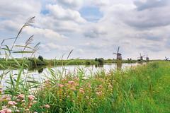 Kinderdijk wind mills (Francesco8723) Tags: sky holland water windmill amsterdam clouds rotterdam cloudy netherland mills kinderdijk reflaction