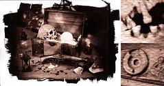 Pirates treasure (retouched) (Nagy Krisztian) Tags: brown print skull diy pirates vandyke archaical
