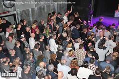 2016 Bosuil-Het publiek bij The Paladins en Cats on the Corner 19