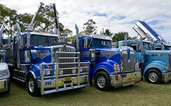 Kenworth tippers (quarterdeck888) Tags: nikon flickr display transport frosty lorry trucks freight penrith kenworth tractortrailer semitrailer overtheroad tippers haulage quarterdeck class8 truckshow roadtransport heavyhaulage t904 t909 d7100 truckphotos t908 expressfreight truckanddog australianroadtransport roadfreight truckdisplay jerilderietruckphotos jerilderietrucks australiantruckshows workingtruckshow australiantruckphotos penrithworkingtruckshowpenrithtruckshow2016 penrithworkingtruckshow2016