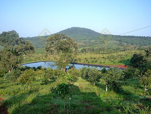 Olla de Agua Michoacan 3