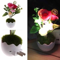 โคมไฟLEDรูปเห็ดดอกไม้หญ้ามีเซ็นเซอร์เสียบปลั๊กแสงเปลี่ยนสีอัตโนมั-ติตกแต่งคอนโดห้องนอนนั่งเล่น พร้อมส่งLED2 ราคา590บาท โทรสั่งของกับ พี่โน๊ต/พี่เจี๊ยบ : 083-1797221 และ 086-3320788 LINE User ID : @lotusnoss และ lotusnoss.com  โคมไฟ LED รูปเห็ดดอกไม้หญ้าขน
